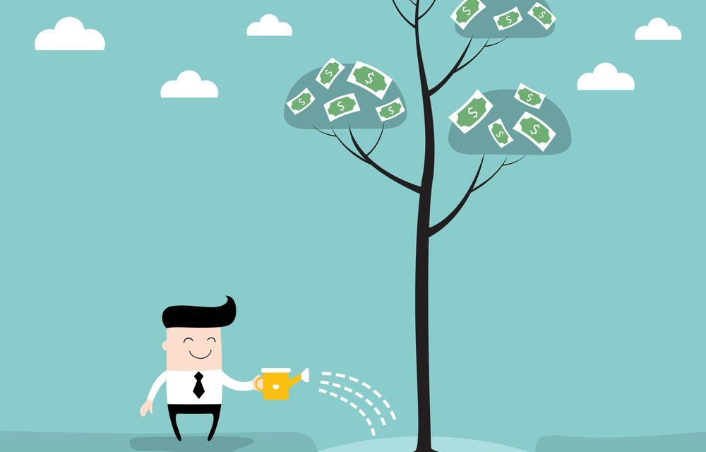 Colha os frutos de um bom investimento!, Midi Invest